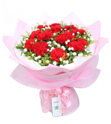 10 Red Carnations with Solidago Online Order to Cebu Philippines