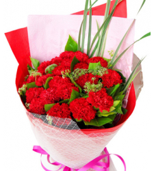 10 Red Carnations with Green leaves Online Order to Cebu Philippines