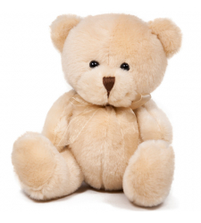 """Small Size Teddy Bear 8"""" Inches"""